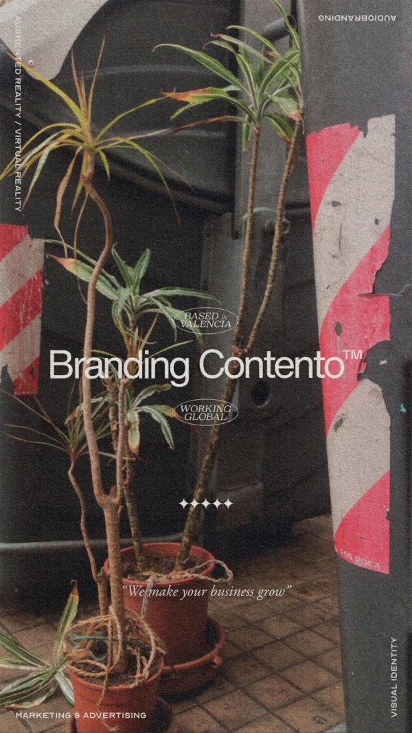 branding-contento-4
